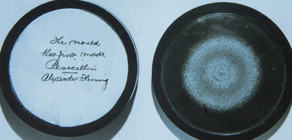 Alexander Fleming saved countless millions of lives.