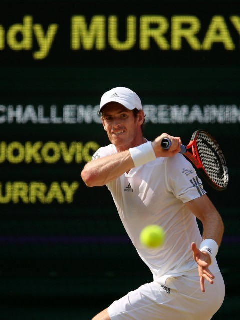 Murray battles Djokovic (Julian Finney/Getty Images)